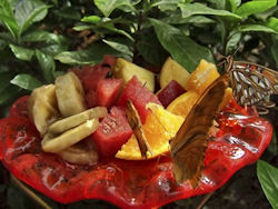 Attract butterflies with a fruit feeder