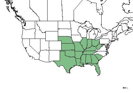 asclepias viridis native range